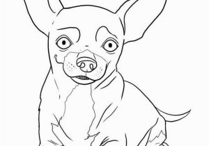 Teacup Chihuahua Coloring Pages Chihuahua Coloring Pages Awesome 8 Best Chihuahuas