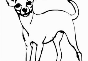 Teacup Chihuahua Coloring Pages Chihuahua Coloring Pages Fresh 344 Best Adult Coloring Pages