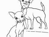 Teacup Chihuahua Coloring Pages Chihuahua Coloring Pages Lovely 654 Best Coloring therapy