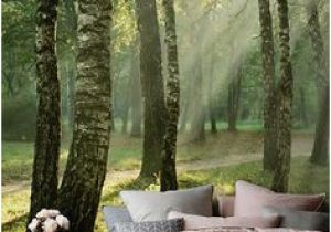 Teenage Wall Murals Uk Sea Of Trees forest Mural Wallpaper