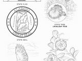 Tennessee State Tree Coloring Page Alabama State Symbols Coloring Page