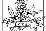 Texas Bluebonnet Coloring Page Texas State Flower Coloring Page Texas My Texas