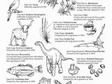Texas Longhorns Coloring Pages Pin by Christye Price On Texas