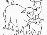The Addams Family Coloring Pages Easter Lamb Coloring Page