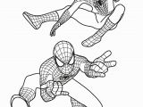 The Amazing Spiderman Printable Coloring Pages Free Printable Spiderman Colouring Pages and Activity