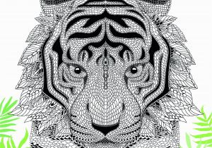 Tiger Face Coloring Pages the Menagerie