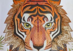 Tiger Face Coloring Pages Tiger the Menagerie Animal Portraits to Color In 2019