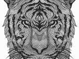 Tiger Outline Coloring Page Elegant Tiger Head Coloring – Hivideoshowfo