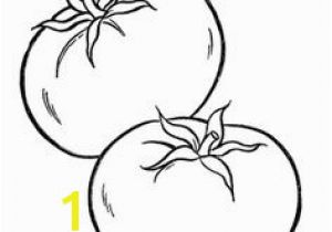 Tomatoes Coloring Pages 91 Best Coloring Pages Mandela Images
