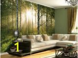 Touch Of Modern Wall Mural 119 Best 3d Floors & Walls Images