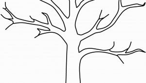 Tree Branch Coloring Page Fall Tree Template Yatay Horizonconsulting