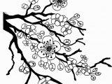 Tree Branch Coloring Page Sakura Bloom Drawing