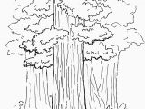 Tree Coloring Pages for Adults Drawing Book for Kids 20 Pages Unique Monet Coloring Pages
