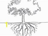 Tree with Roots Coloring Page 28 Collection Of Tree Coloring Pages with Roots