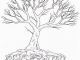 Tree with Roots Coloring Page Tree Drawing with Color and Roots Tree with Roots Coloring Page