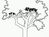 Tree with Roots Coloring Page Tree with Roots Coloring Page Coloring Page Cvdlipids