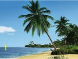 Tropical Beach Wall Mural Palm Tree Wallpaper Mural 4074