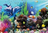 Tropical Fish Wall Mural Aquarium Images 3d topastersathletics