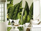 Tropical Murals Paintings Custom Any Size Mural Wallpaper Modern Rain Tropical Palm Banana