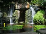 Tropical Waterfall Murals Hidden Waterfall with Pond Wall Mural Tropical Wallpaper
