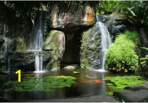 Tropical Waterfall Murals Hidden Waterfall with Pond Wall Mural Tropical Wallpaper