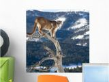 Turn Pictures Into Wall Murals Mountain Lion Dead Tree Wall Mural