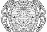 Turtle Coloring Pages for Adults 20 Gorgeous Free Printable Adult Coloring Pages Page 3 Of 22