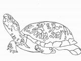 Turtle Coloring Pages for Adults Turtle Coloring Pages for Adults Sea Turtles Coloring New Coloring