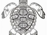 Turtle Mandala Coloring Pages Printable Pin by Muse Printables On Adult Coloring Pages at Coloringgarden