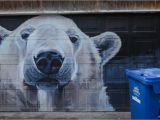 Twin Walls Mural Company Winnipeg Kanada Die 25 Besten Winnipeg Sehenswürdigkeiten