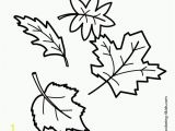 Types Of Leaves Coloring Pages 53 Most Fine Autumn Coloring Pages Free Printable Willpower