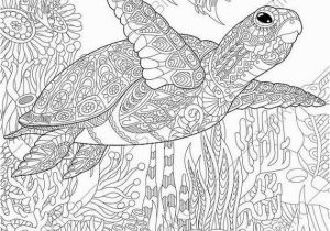 Under the Sea Coloring Pages Printable Coloring Pages for Adults Sea Turtle Adult Coloring Pages