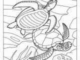 Undersea Creatures Coloring Pages Unique Coloring Pages Fish for Adults Picolour