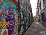 Vancouver island Wall Murals Sprachreisen Melbourne Für Erwachsene