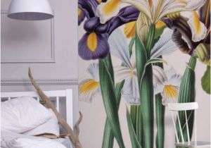 Wall Art Wallpaper Murals Uk Iris Xiphium Mural New York Botanical Garden From £60 Per