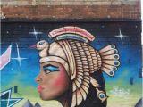 Wall Mural Artist Sydney Street Art Newtown Sydney Australia