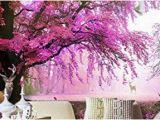 Wall Mural Cherry Blossom Art Wall Mural 3d Tapete Wallpaper Custom 3d Wallpaper