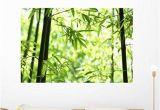 Wall Mural Decals Nature Amazon Wallmonkeys Bamboo Wall Mural Peel and Stick