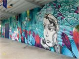 Wall Mural Painters Sydney sophi Odling