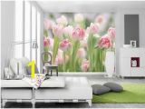 Wall Mural Superstore 446 Best Full Size Wall Murals Images