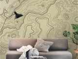Wall Murals and Posters topographical Map Wall Mural Wallpaper Maps