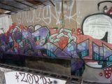 Wall Murals Charlotte Nc Charlotte Nc