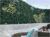 Wall Murals In Bangalore Outdoor Wall Creepers Picture Of High Ultra Lounge
