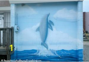 Wall Murals In Maryland David Dunleavy Sealife Wall Murals In north Wildwood