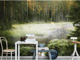 Wall Murals Nature Scenes Wall Murals Wallpapers and Canvas Prints
