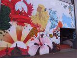 Wall Murals New Zealand Street Art In Central Auckland