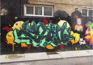 Wall Murals toronto toronto 2013 Graffiti Alley Flickr Nicole isenbarger