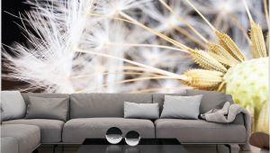 "Wall Paper Murals Uk Wallpaper Fluffy Dandelion"" 3d Wallpaper Murals Uk"