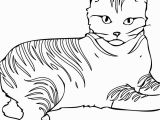 Warriors Cats Coloring Pages Free American Ninja Warrior Coloring Pages American Prize Winning