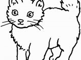 Warriors Cats Coloring Pages Free Coloring Cat